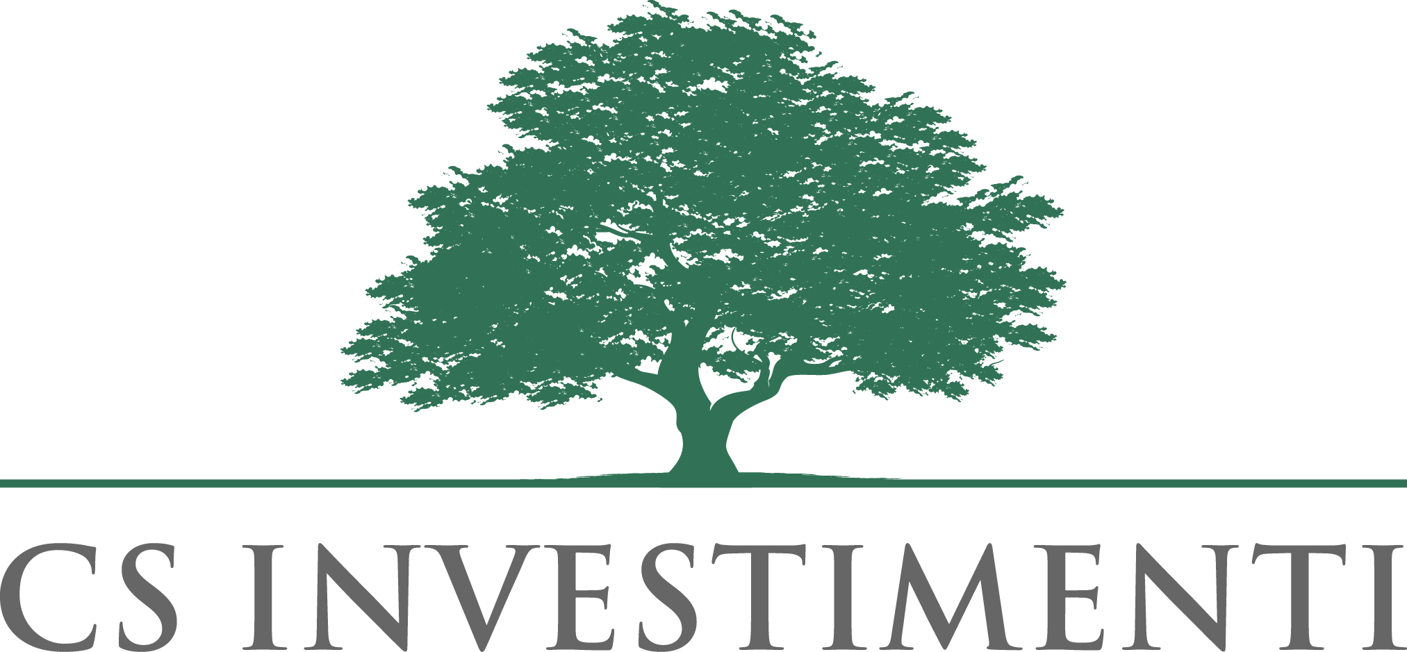 csinvestimenti logo
